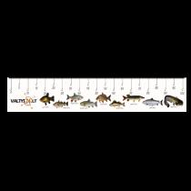 Liniuotė žuviai matuoti iš PVC medžiagos